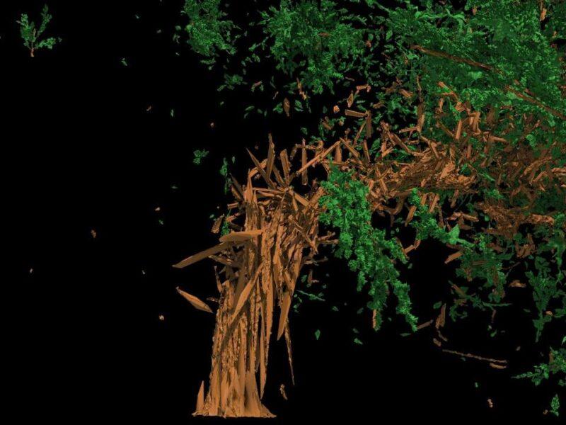 Houdini FX - Tree splinter tool