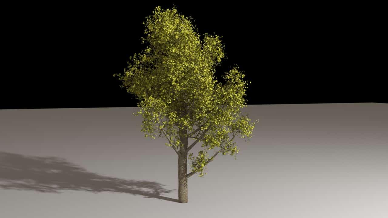 Houdini - Tree Generator Asset